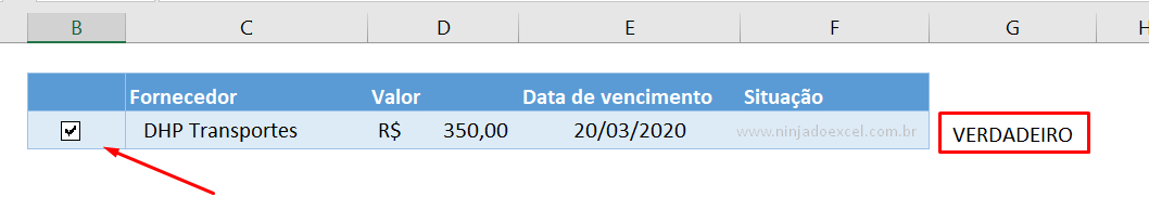 Marcando caixa de seleção no Excel